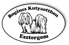 Bogáncs Kutya- és Kisállatotthon, Esztergom